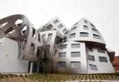 Clinica Lou Ruvo, Frank Gehry
