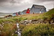 Comunitatea ecologica Grodians. Scotia