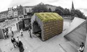 Pavilionul Rotterdam contribuie la constientizarea problemelor actuale de mediu