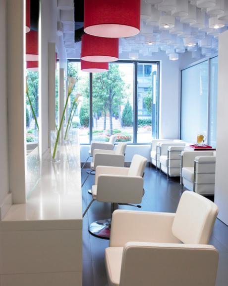 Design interior. Salonul Vasken Demirjian