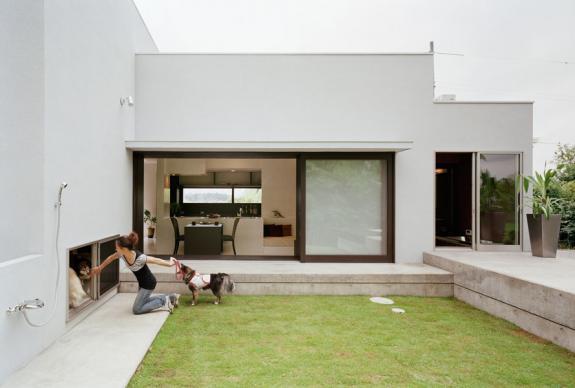 Proiecte case mici. Casa little