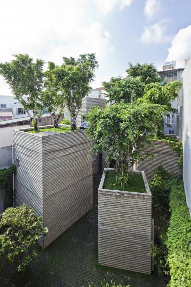 Casa pentru copaci. O oaza de vegetatie
