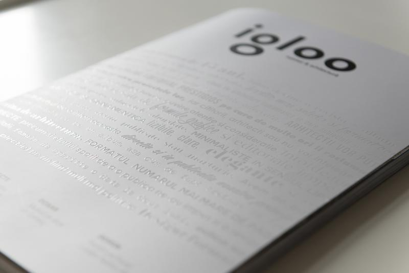 O revista alba, despre spatii. Noul igloo, editie de colectie.
