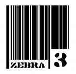 ZEBRA 3 - Alexandru Calin